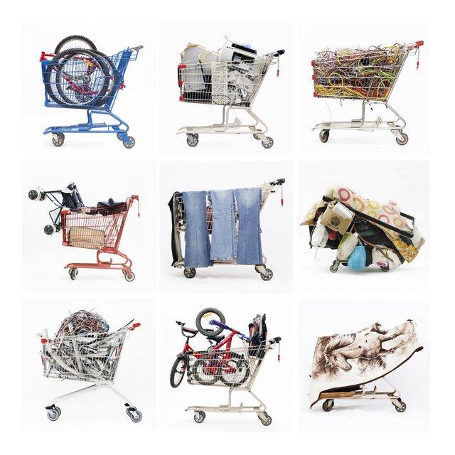 InCamera-shoppingcartslarge.jpg