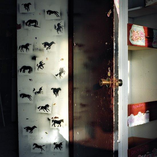 horses-large.jpg