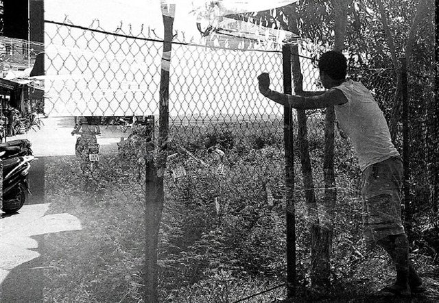 Lu_pentimento-fence-large_0.jpg