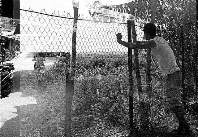 Lu_pentimento-fence-large_0.jpg