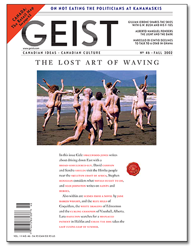 Test Issue 46 385x400