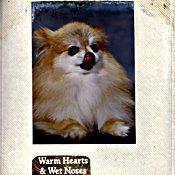 WarmHeartsWetNotes175.jpg