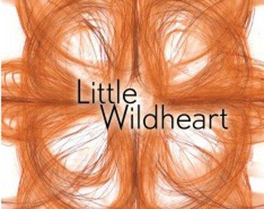 little-wildheart-380x300-closeup