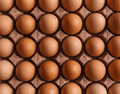 109-brown-eggs-380x300