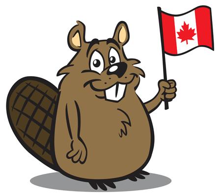 beaver-fools_1.png